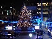 フジテレビ前のクリスマスツリー(まだ建設中)