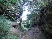 岩を削った山道(マウスオンで横浜霊園)