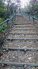 大丸山への長い階段